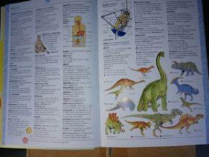 Dictionary inside